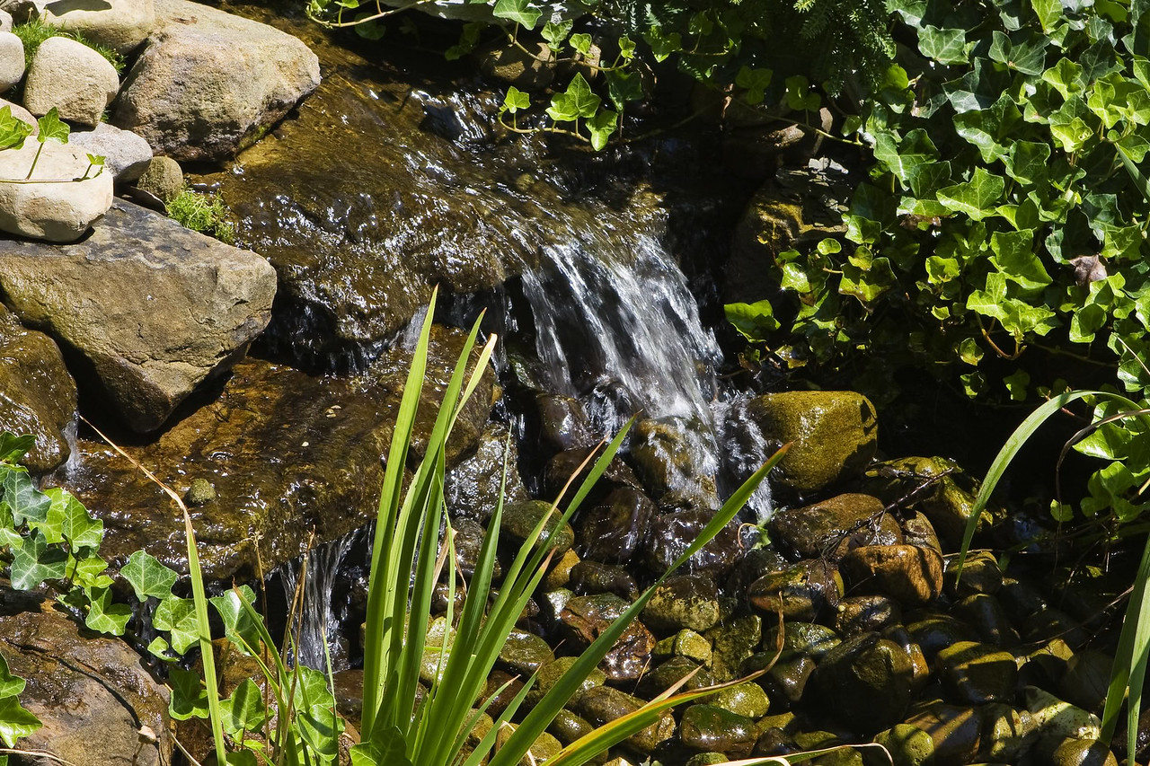 20080816 Cleveland Gardens_0938 copy