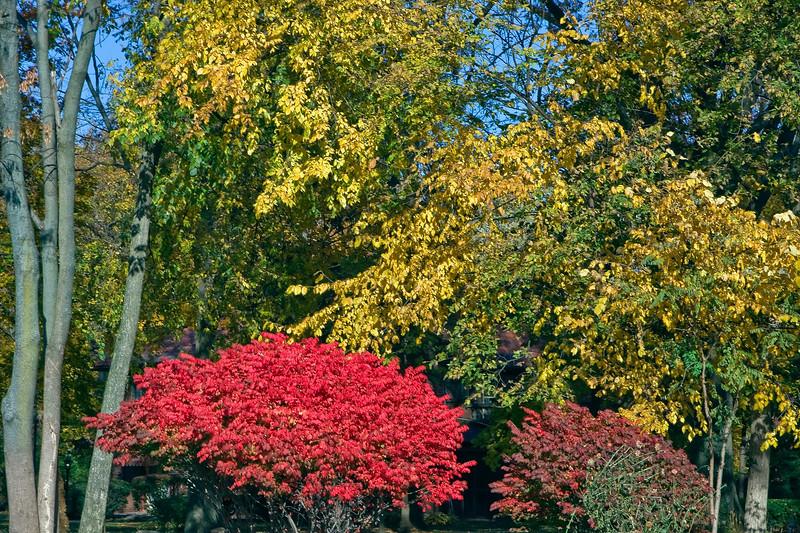 Indiana Fall 0017