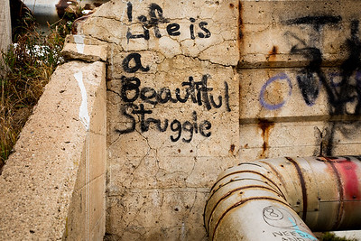 Life is a Beautiful Struggle