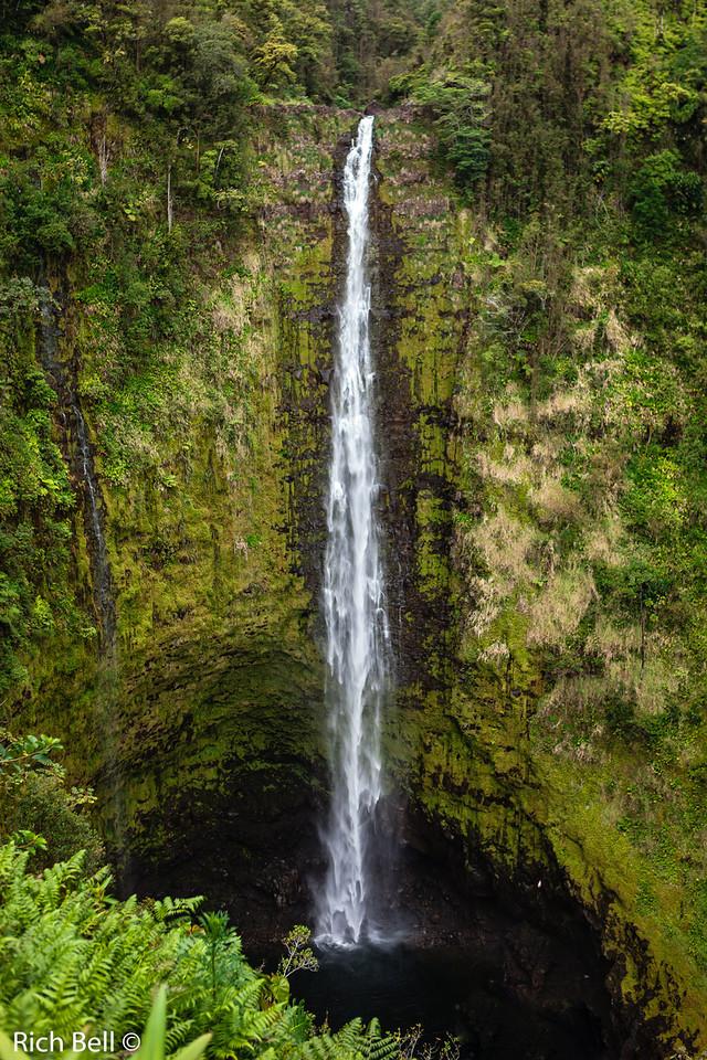 20130418 Hawaii 0644