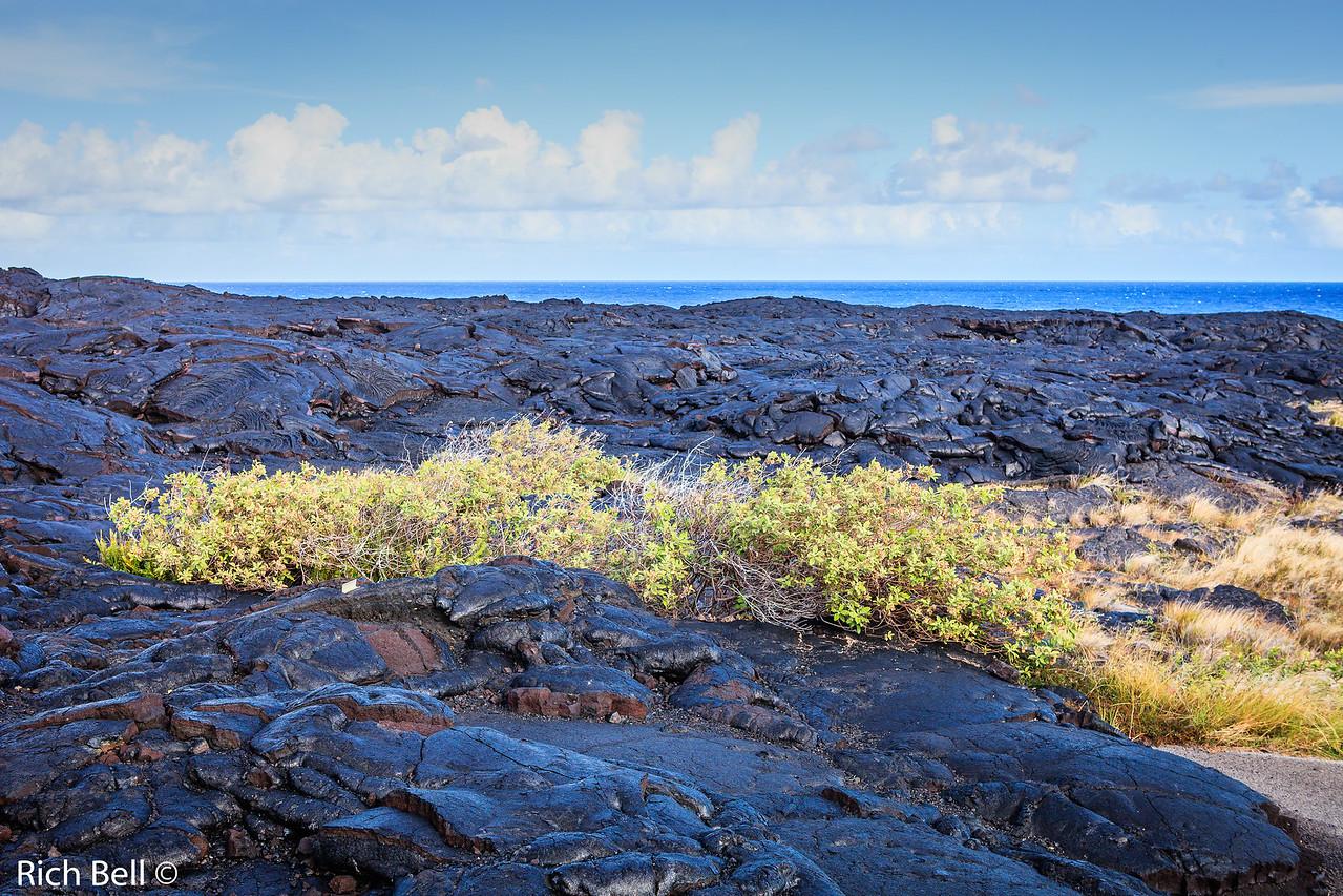 20130417 Hawaii 0486