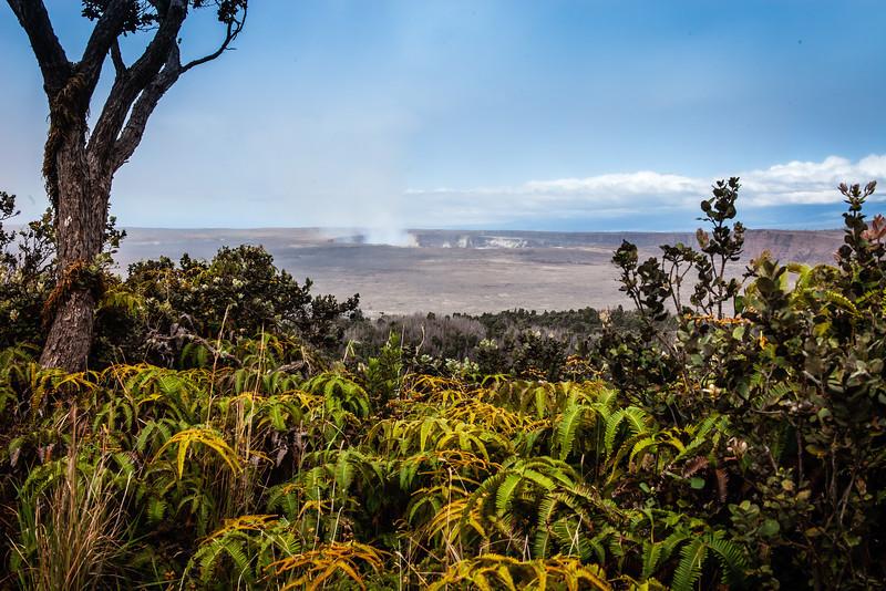 20130418 Hawaii 0510