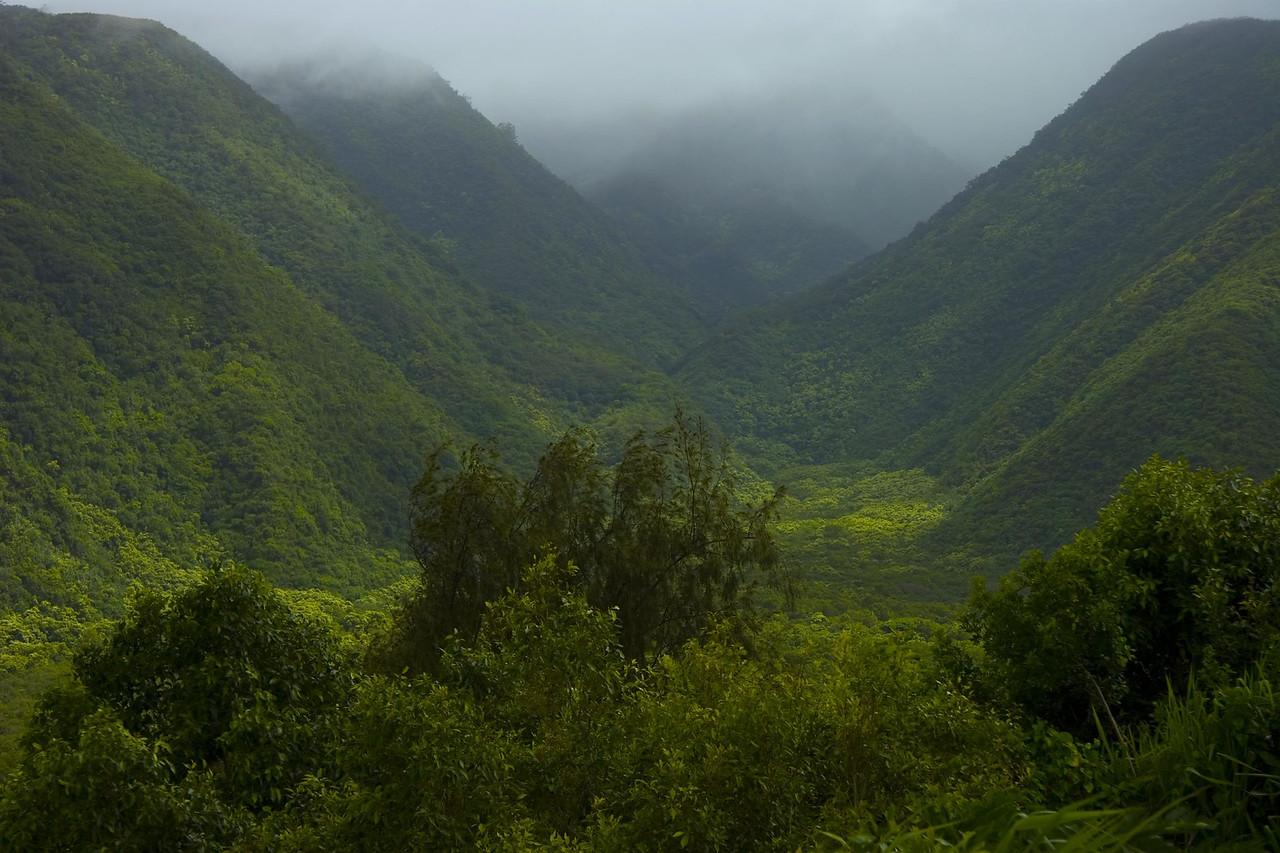 20060806 Hawaii 0045