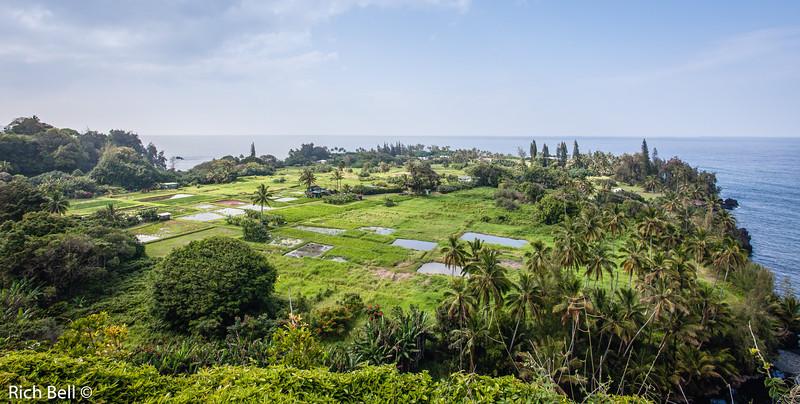 20130422 Hawaii 0061