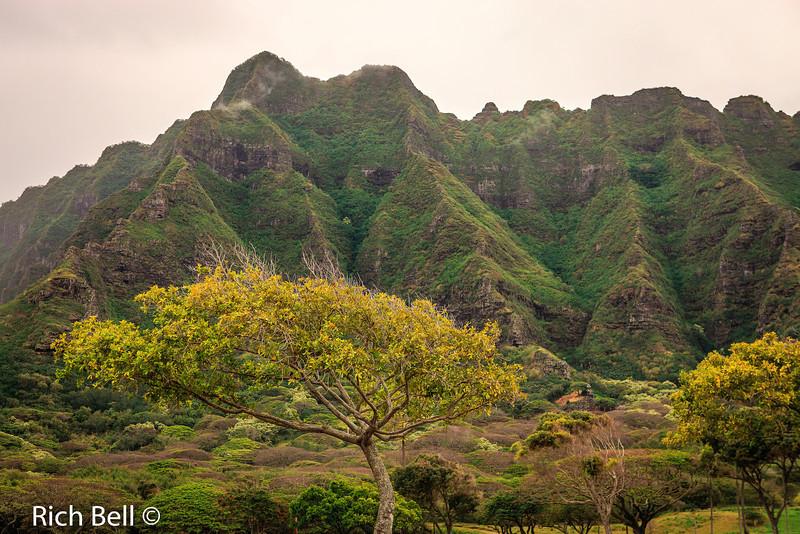 20130415 Hawaii 0105