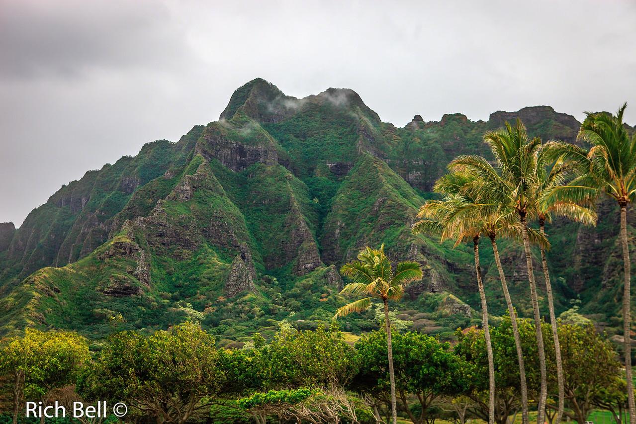 20130415 Hawaii 0099