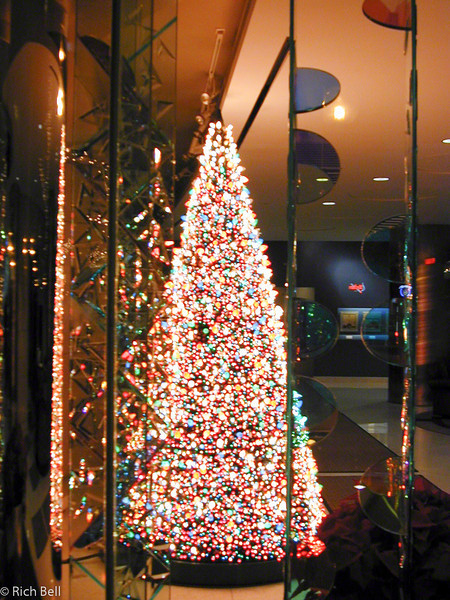20100721IPALCO Christmas Tree0061
