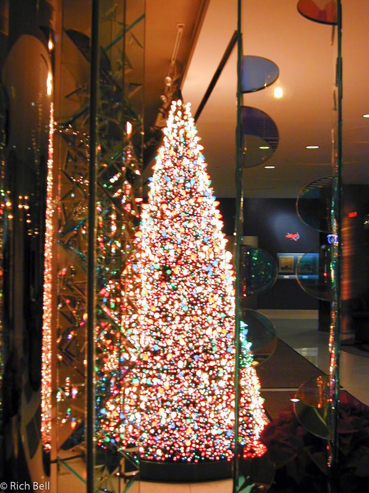 20100721IPALCO Christmas Tree0061