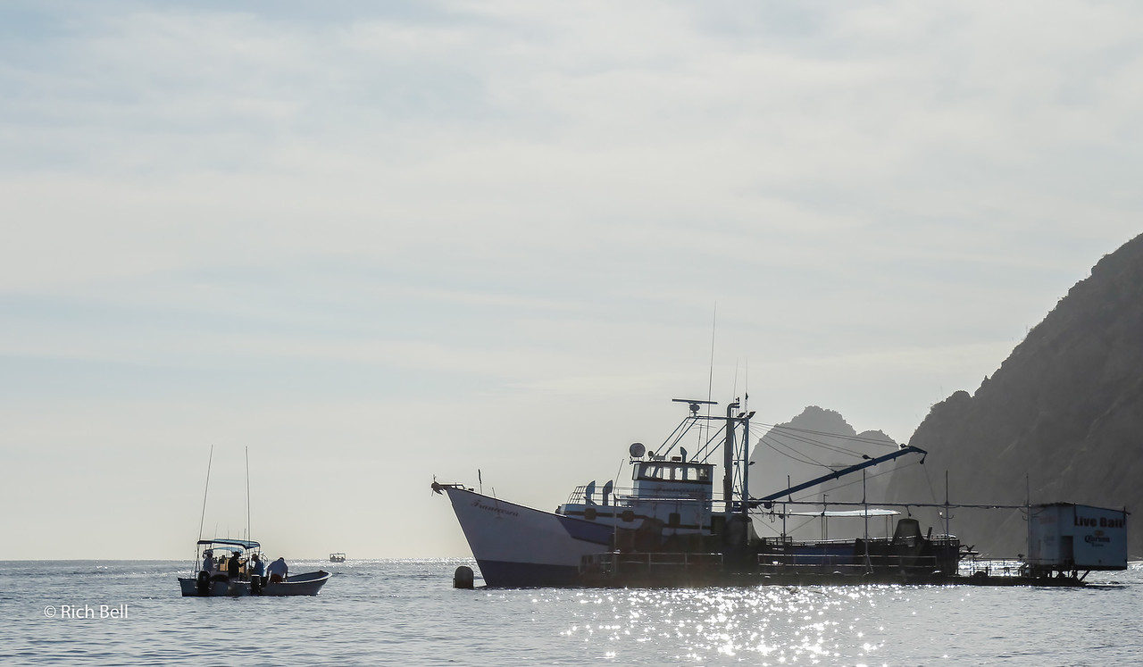 20140221 Cabo 00061