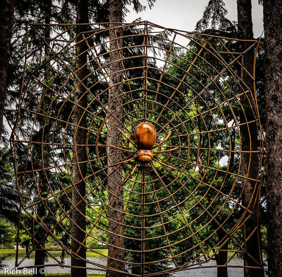 20130601  Morton Arboretum -0238