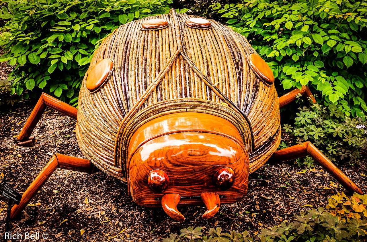 20130601  Morton Arboretum -0229