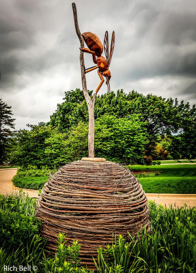 20130601  Morton Arboretum -0201