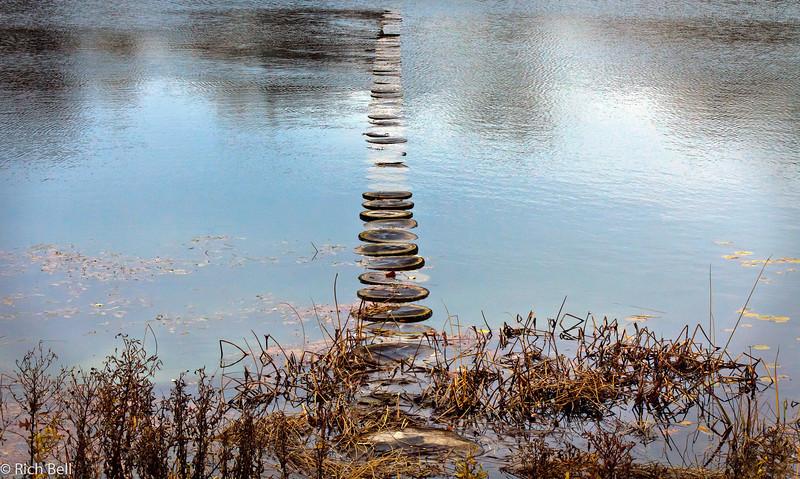 20111106 Morton Arboretum  0230