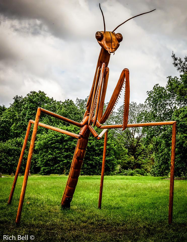20130601  Morton Arboretum -0262