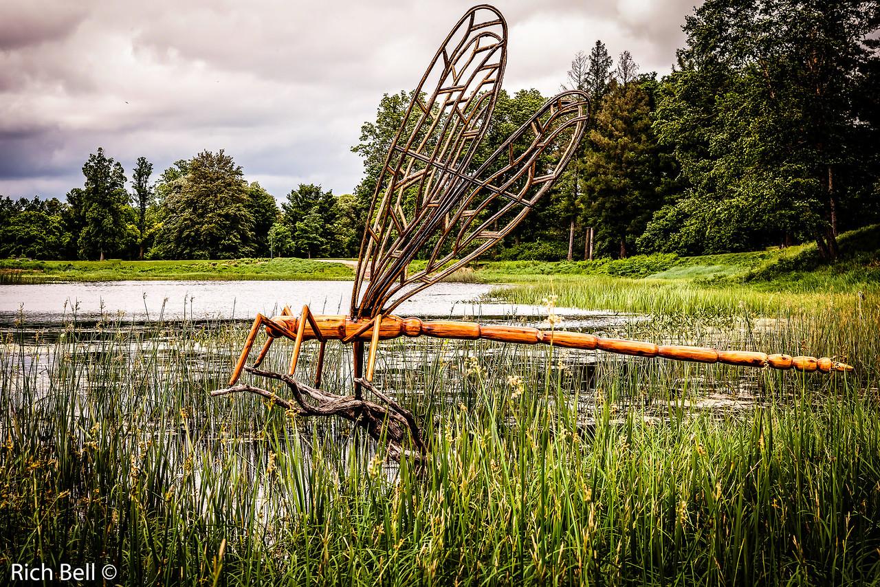 20130601  Morton Arboretum -0247