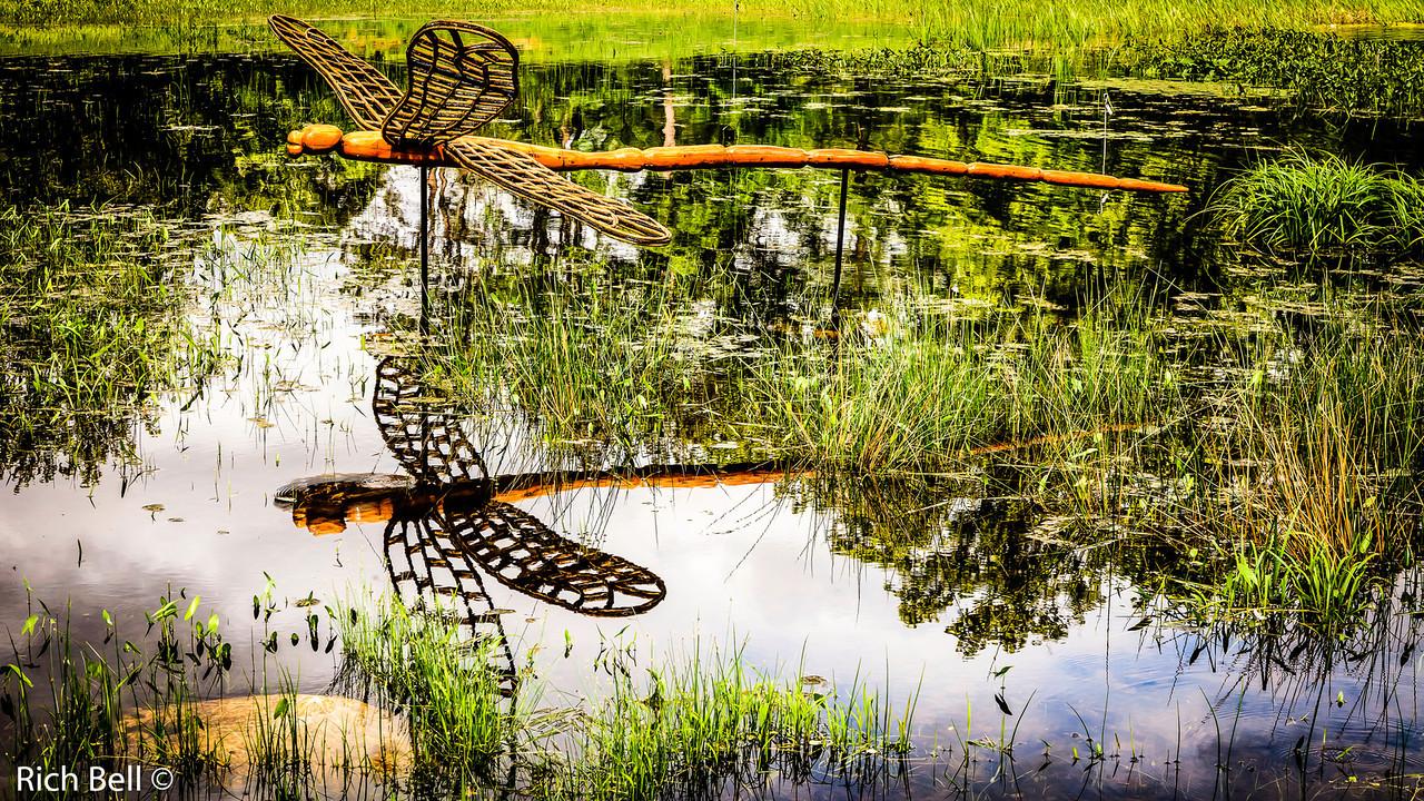 20130601  Morton Arboretum -0271-Edit