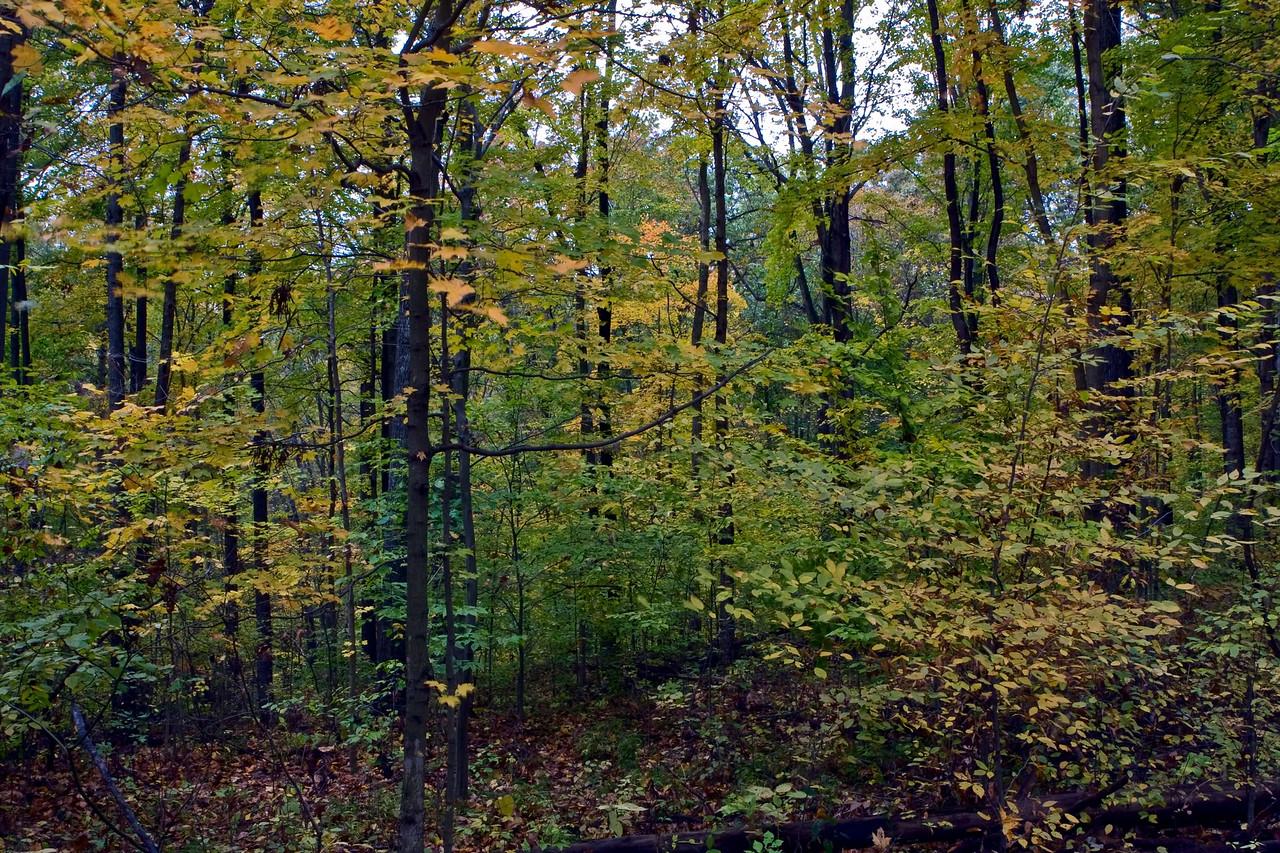 20081025 Park County Indiana0051