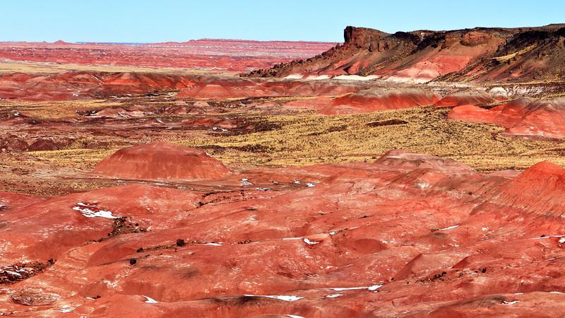 20110114_Arizona_0037
