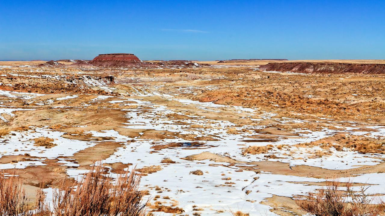 20110114_Arizona_0003
