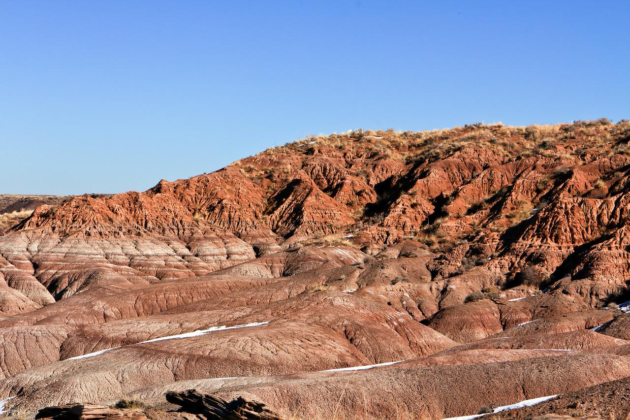 20110114_Arizona_0011
