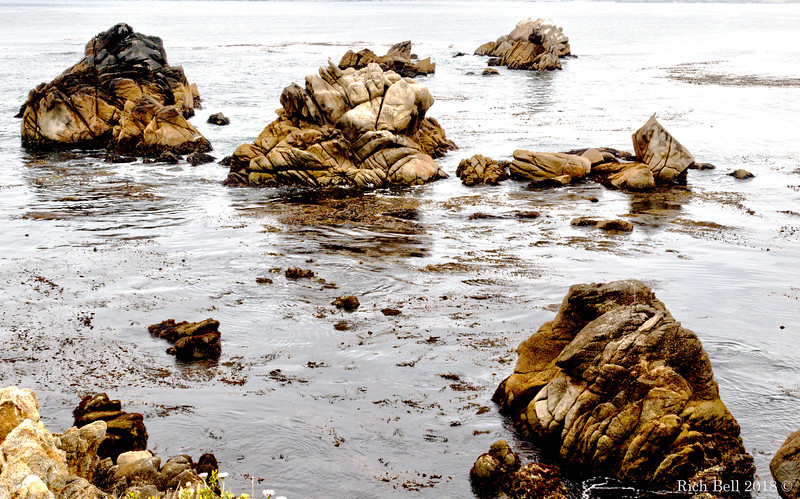 06242018 Point Lobos 0528-Edit-2And3more_Realistic copy