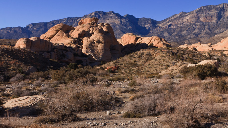 20110105 Red Rock Canyon 0062