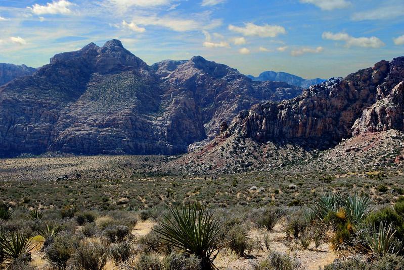 2017 Red Rock Canyon 0046-Edit_7-Edit_8-Edit_Photographic