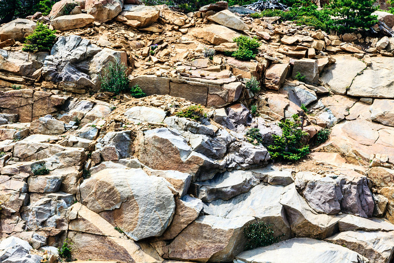 20120624 Rocky Mountain -0046