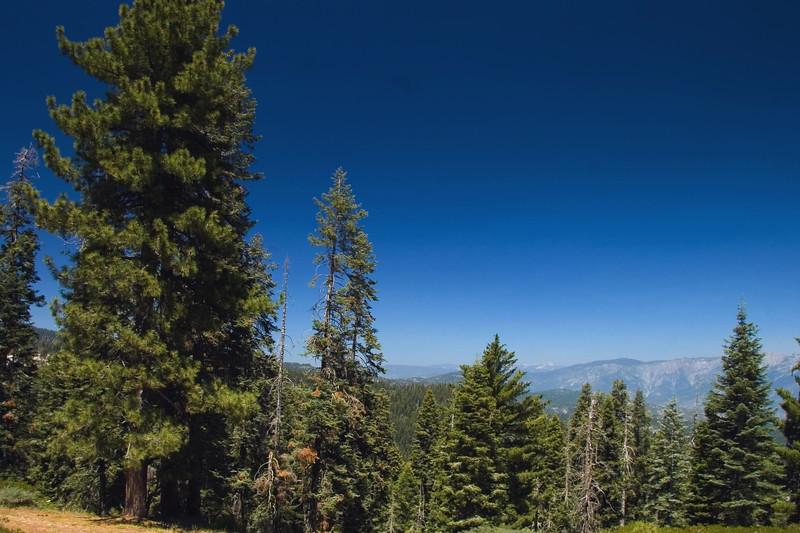 Sequoia & Kings Canyon, California 0012