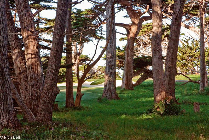 20100327_california_0182