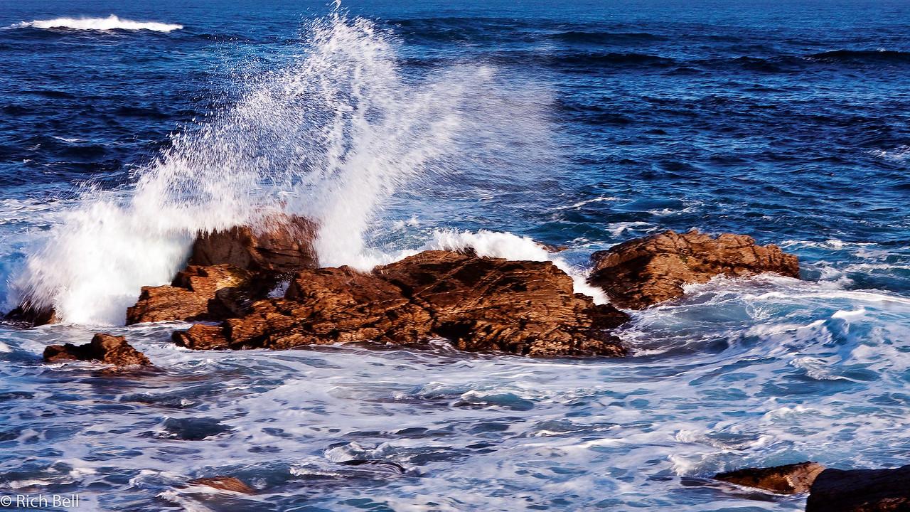 20100327_california_0168