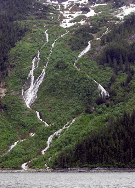 Sawyer Glacier, Alaska 0017
