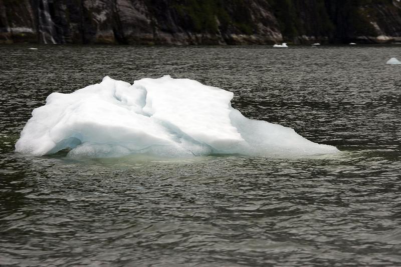 Sawyer Glacier, Alaska 0033