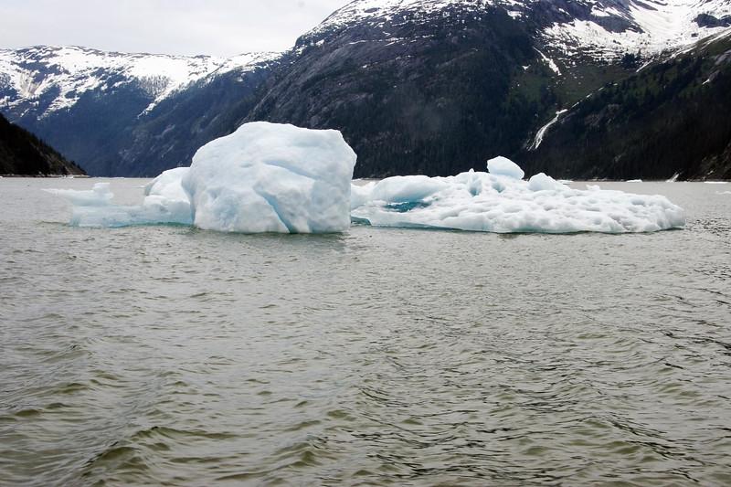 Sawyer Glacier, Alaska 0028