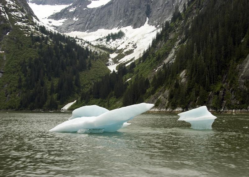 Sawyer Glacier, Alaska 0023