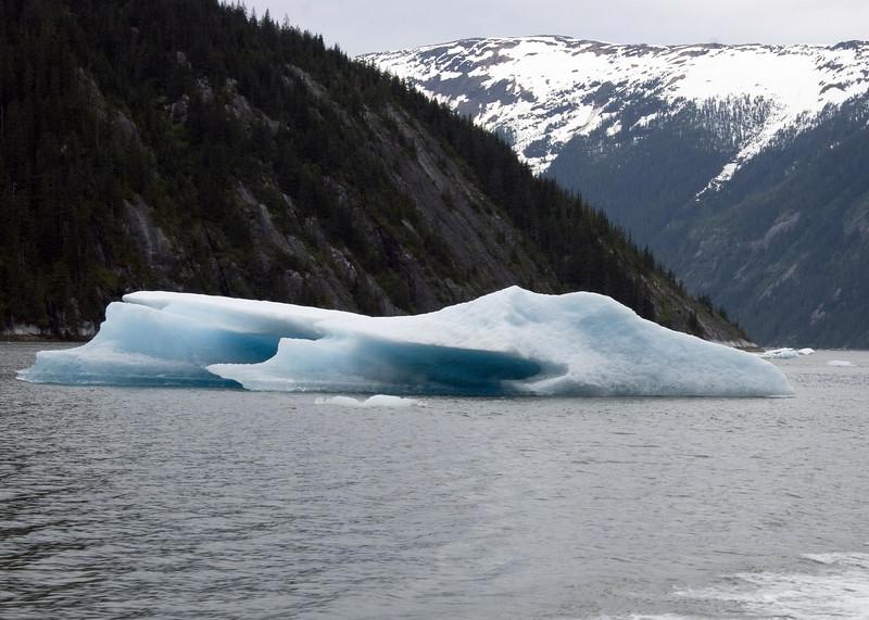Sawyer Glacier, Alaska 0025