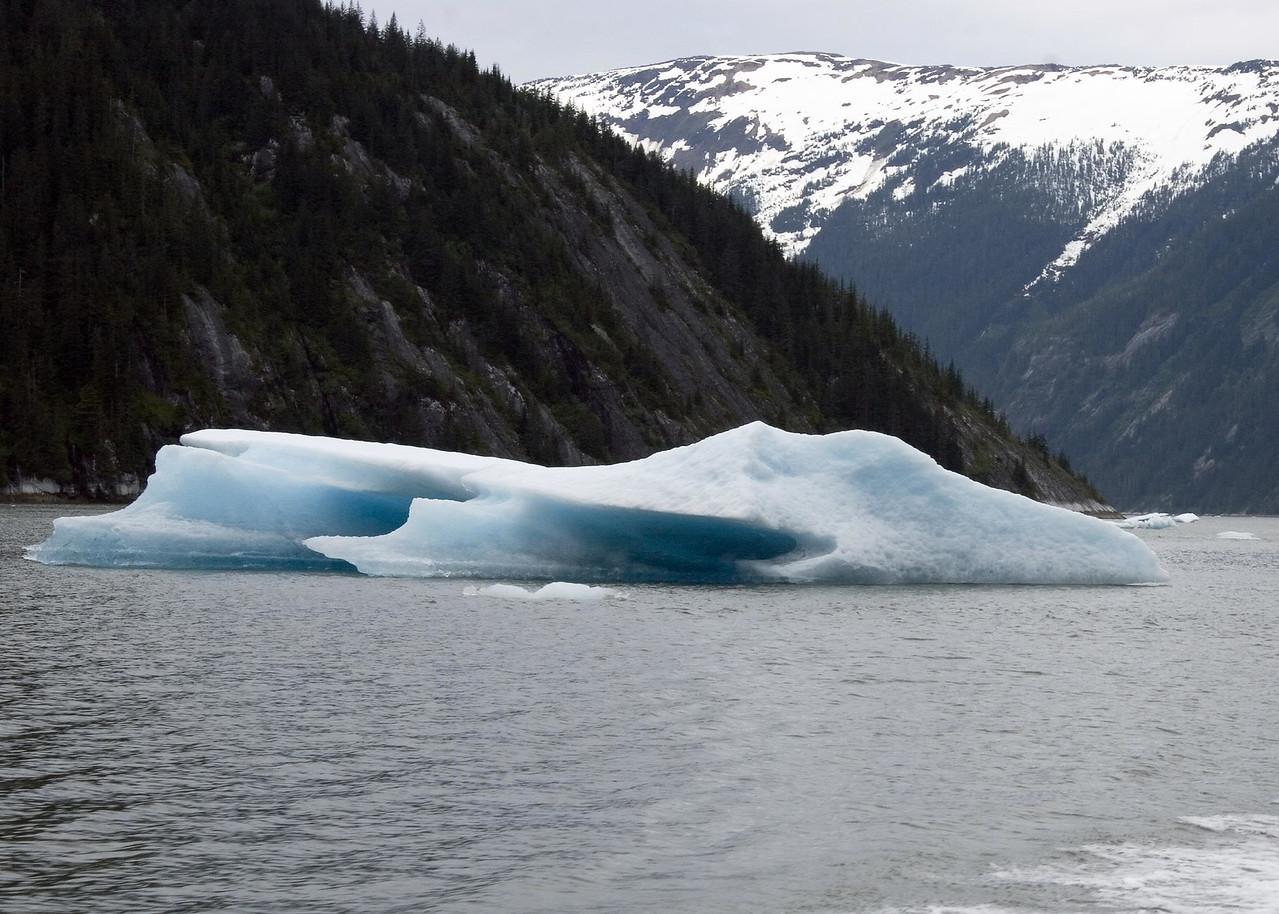 Glaciers and Iceberg