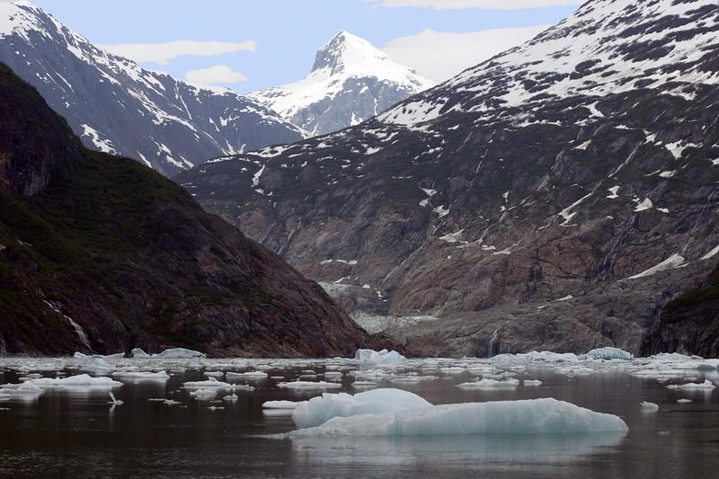 Sawyer Glacier, Alaska 0039