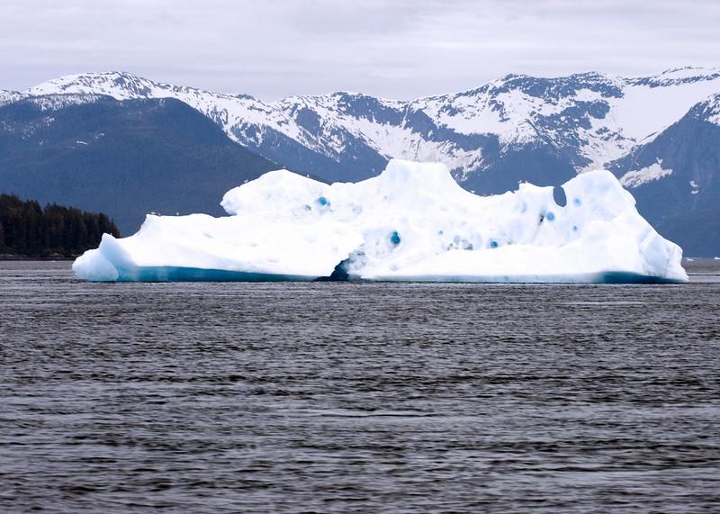 Sawyer Glacier, Alaska 0010