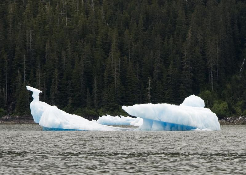 Sawyer Glacier, Alaska 0020