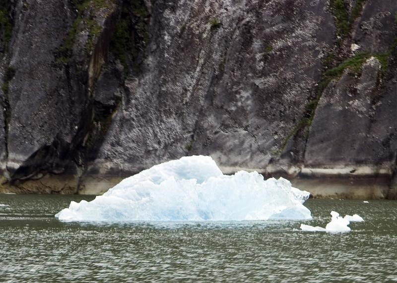 Sawyer Glacier, Alaska 0032