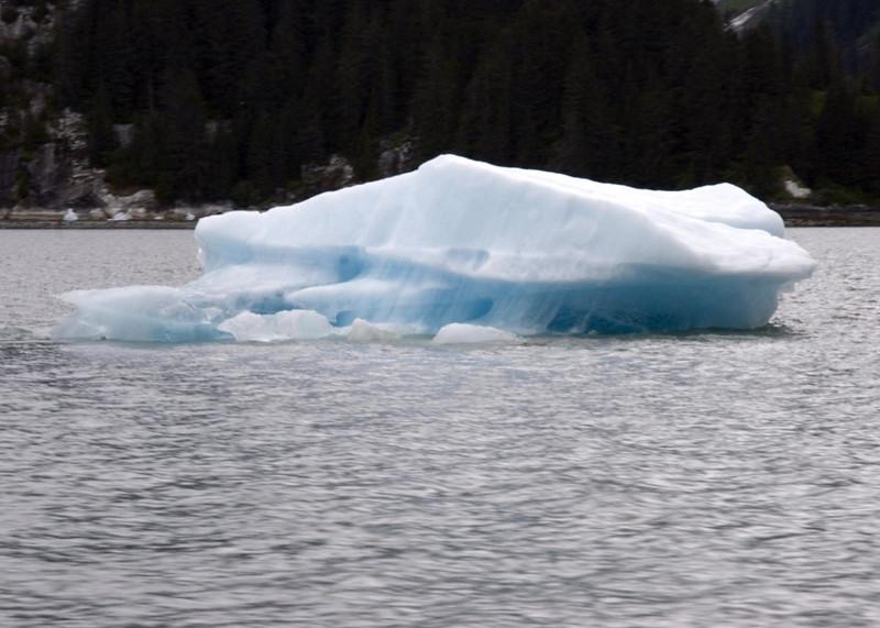 Sawyer Glacier, Alaska 0031
