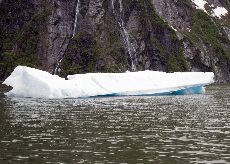 Sawyer Glacier, Alaska 0024