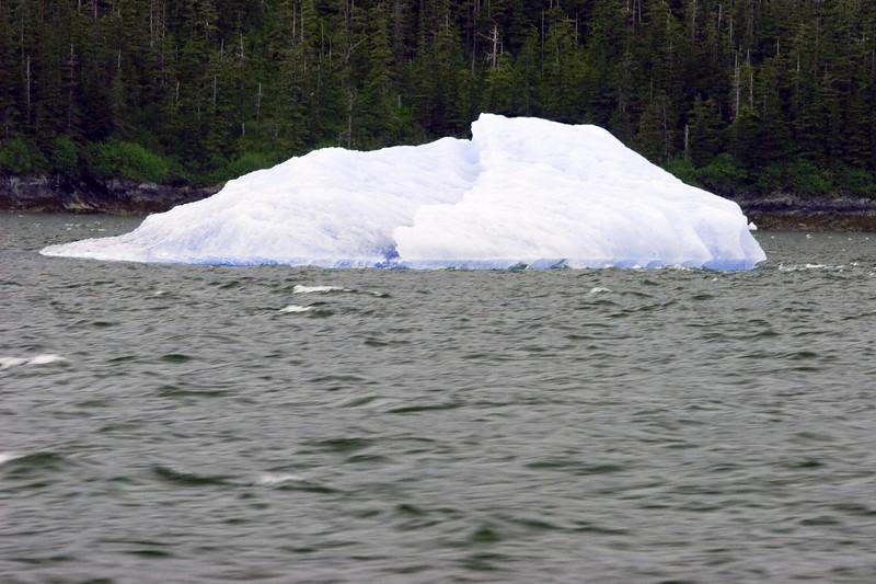 Sawyer Glacier, Alaska 0019