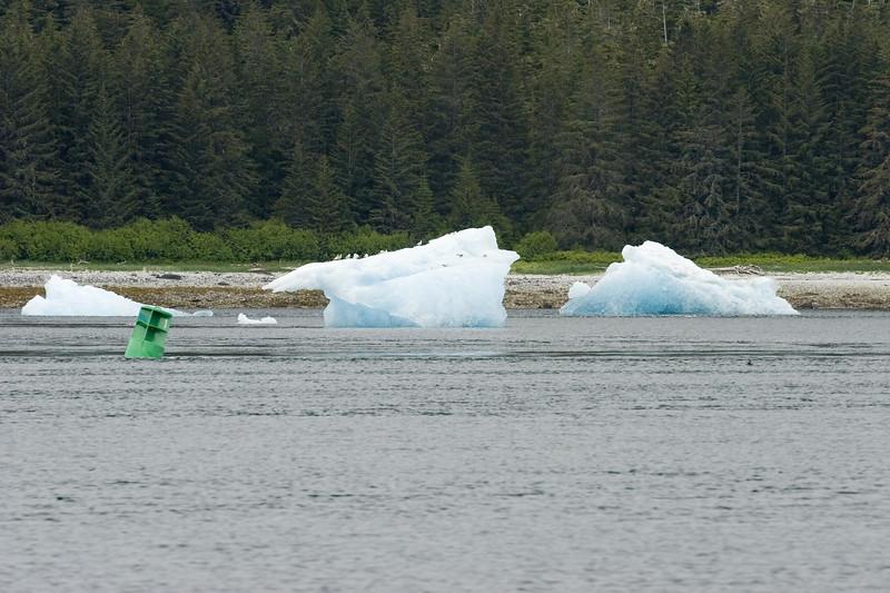 Sawyer Glacier, Alaska 0009