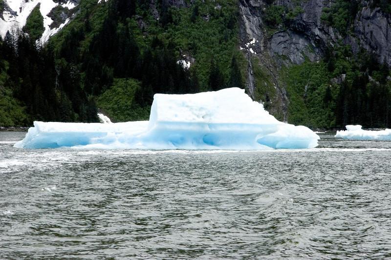 Sawyer Glacier, Alaska 0027