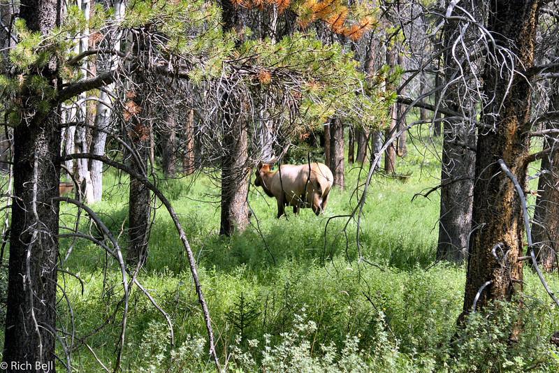 20030808 Banff Canada 0358