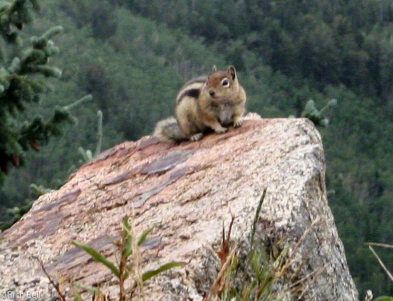 20050831 Mt  Evans Colorado 0029 A