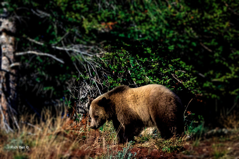 20131008 Wyoming _0341