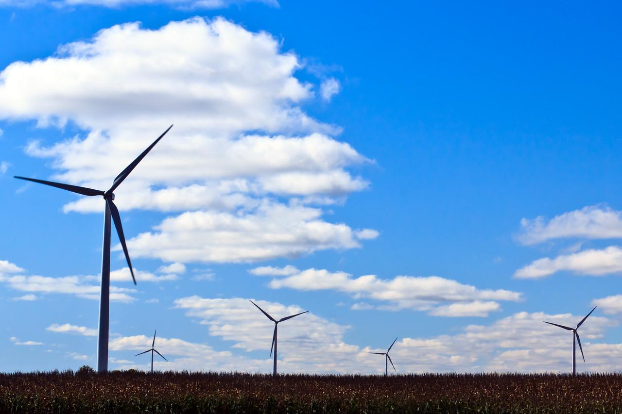 20111001 Wind Farm  32528
